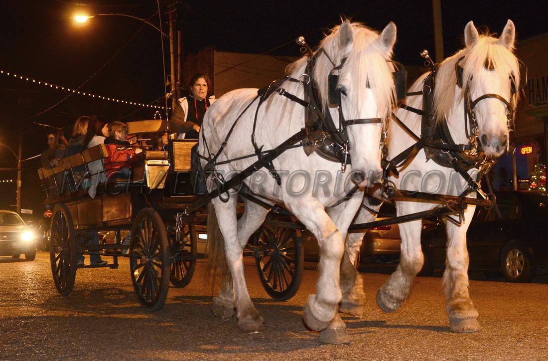 Pegasus Carriage Company, Pearl River, Louisiana