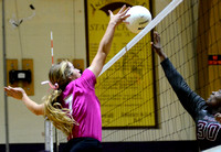 Ascension Catholic vs. White Castle Volleyball 2017 {Photographer Michael Tortorich}