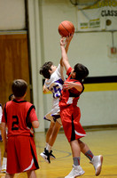 Ascension Catholic vs. St. Theresa Middle School Boys Basketball {Michael Tortorich}